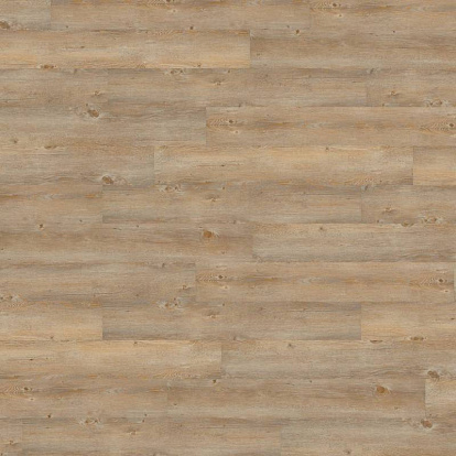 Wineo 600 wood Toscany Pine DLC00007